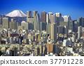 니시 신주쿠, 맑은 하늘, 써니 37791228