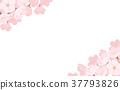 春天 春 花朵 37793826