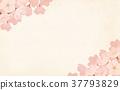 spring, bloom, blossom 37793829
