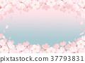 春天 春 花朵 37793831