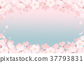 spring, bloom, blossom 37793831
