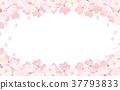 spring, bloom, blossom 37793833