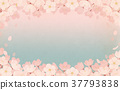 spring, bloom, blossom 37793838