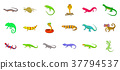 reptile, icon, set 37794537