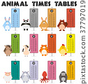 Animal times table on white background 37797019