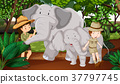 Two elephants and kids in the woods 37797745