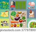Different types of food products in the farm 37797800