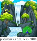 Toucan bird at the waterfall 37797806