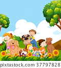 Children and pet dogs in garden 37797828