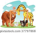 Wooden frame with many animals 37797868