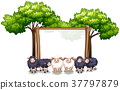 Wooden frame template with sheeps 37797879