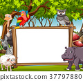 Board template with wild animals in the woods 37797880