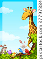 Background template with wild animals 37797884