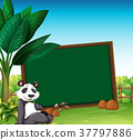 Border template with panda in the field 37797886
