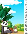 Panda and rabbit in garden 37797891