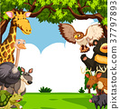 Scene with many animals in forest 37797893