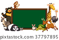 Board template with wild animals 37797895