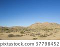 加州沙漠 37798452