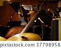 基地 低音 低音提琴 37798958