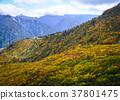 Mountain scenery at autumn in Japan 37801475