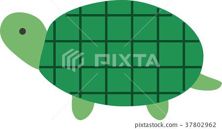 矢量 烏龜 爬行動物 37802962