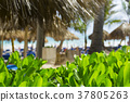 Beach chairs in swimming pool at tropical hotel 37805263