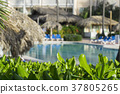 Beach chairs in swimming pool at tropical hotel 37805265