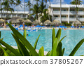 Beach chairs in swimming pool at tropical hotel 37805267