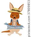 Kangaroo Explorer Hat Illustration 37809853