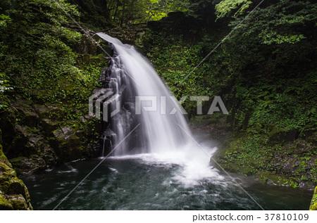 福多的瀑布 赤目四十八瀑 三重县 37810109