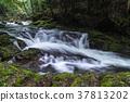 akame 48 waterfalls, mie prefecture 37813202