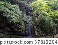 akame 48 waterfalls, mie prefecture 37813204