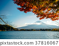 Colorful Autumn in Fuji mountain in japan. 37816067