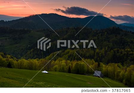 grassy rural slope at dusk 37817065