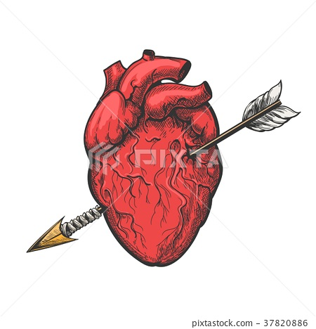 Human heart with arrow tattoo etching 37820886