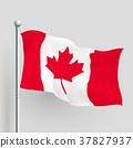 3d vector Canada flag 37827937