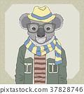 fashion illustration of koala 37828746