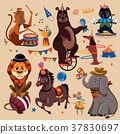 Circus animals set 37830697