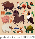 farm animals set 37830820