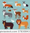 cartoon animals set 37830843