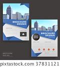 modern brochure design 37831121