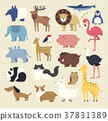 cartoon animals set 37831389