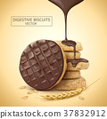 Chocolate digestive biscuit element 37832912