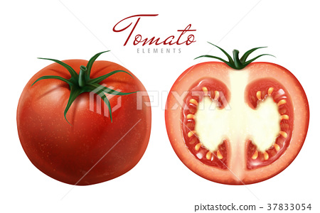red tomatoes illustration 37833054