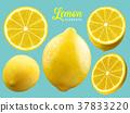 Realistic Lemon elements 37833220