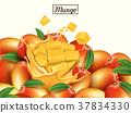 Fresh mango design 37834330