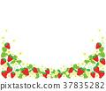 strawberries, strawberry, fruit 37835282