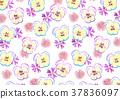 三色堇 花朵 花卉 37836097
