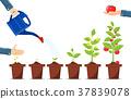 growth, plant, pot 37839078