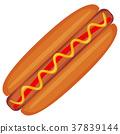 hot, dog, hotdog 37839144